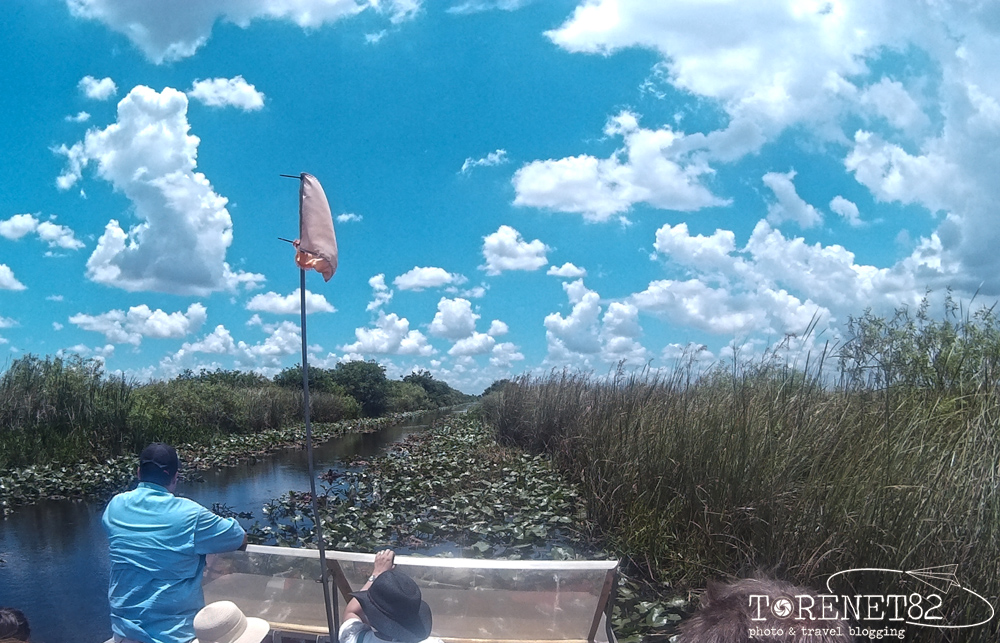 shark valley florida everglades airboat