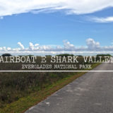 shark valley everglades